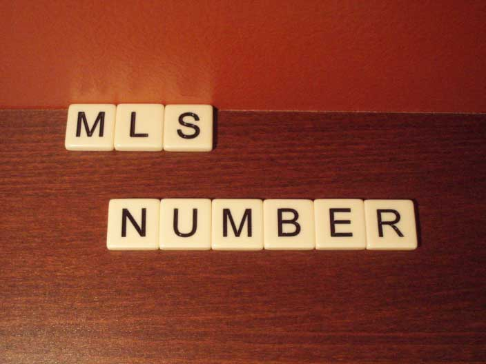 MLS-Number-Real-Estate-Term