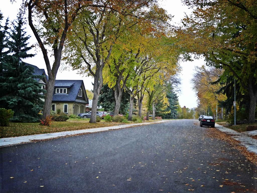 Windsor Park, Edmonton Neighbourhood Profile Picture