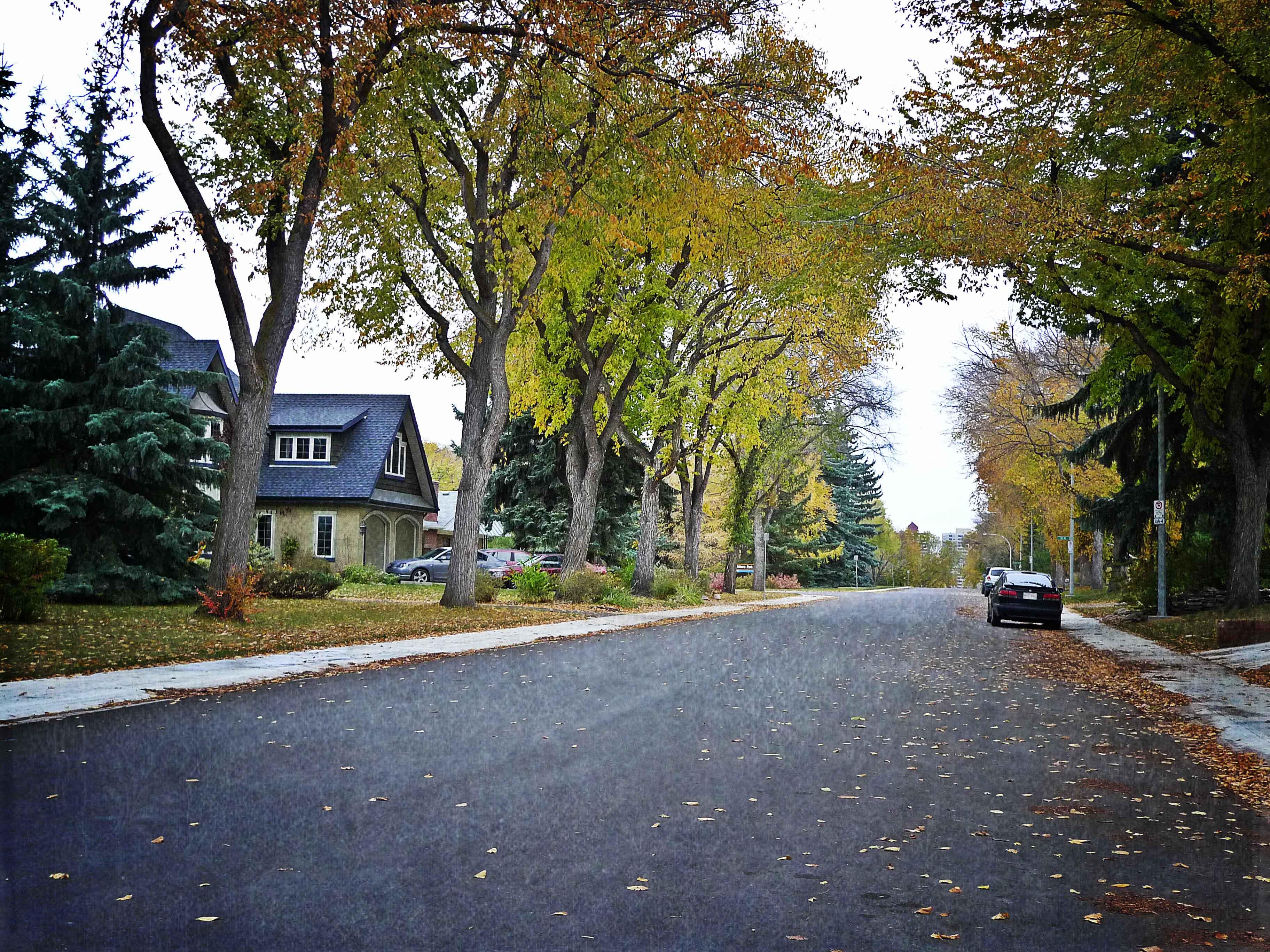 Windsor Park, Edmonton | Neighbourhood Profile