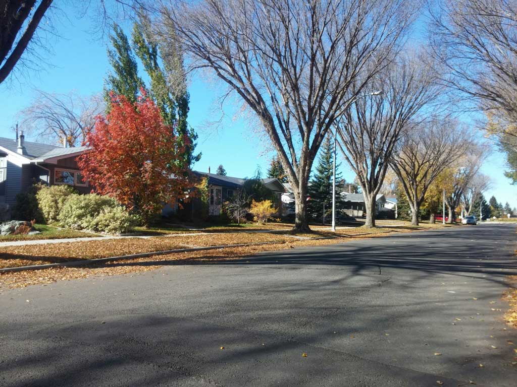 Meadowlark Park, Edmonton | Neighbourhood Profile