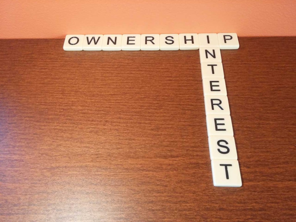 Ownership Interest Definition Profile